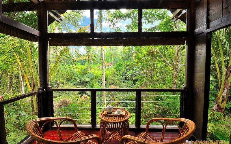 jendela di bali kingfisher deck 05