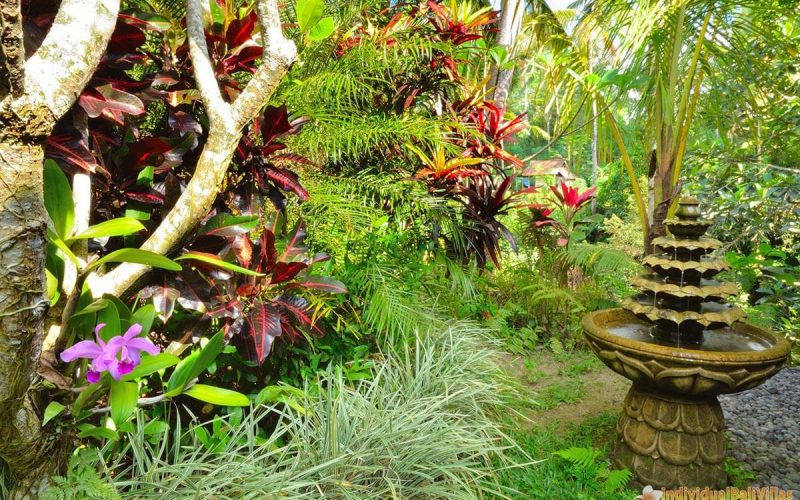 jendela di bali kingfisher garden 01